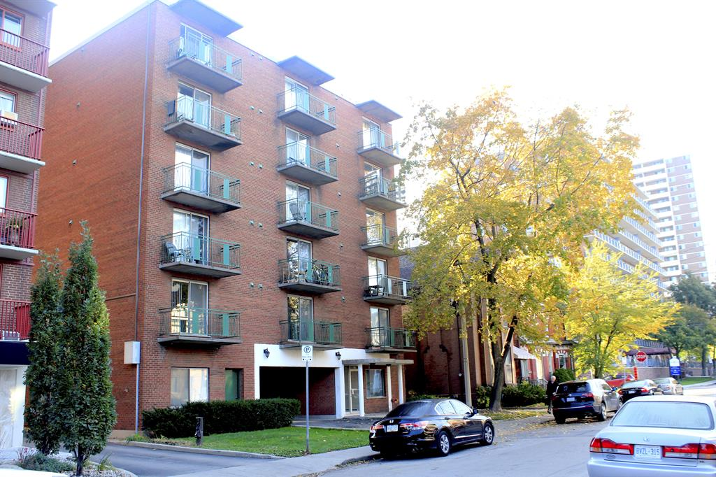 1 Bedroom Apartment Hamilton Ontario One Bedroom Hamilton Mountain Apartment For Rent Ad Id
